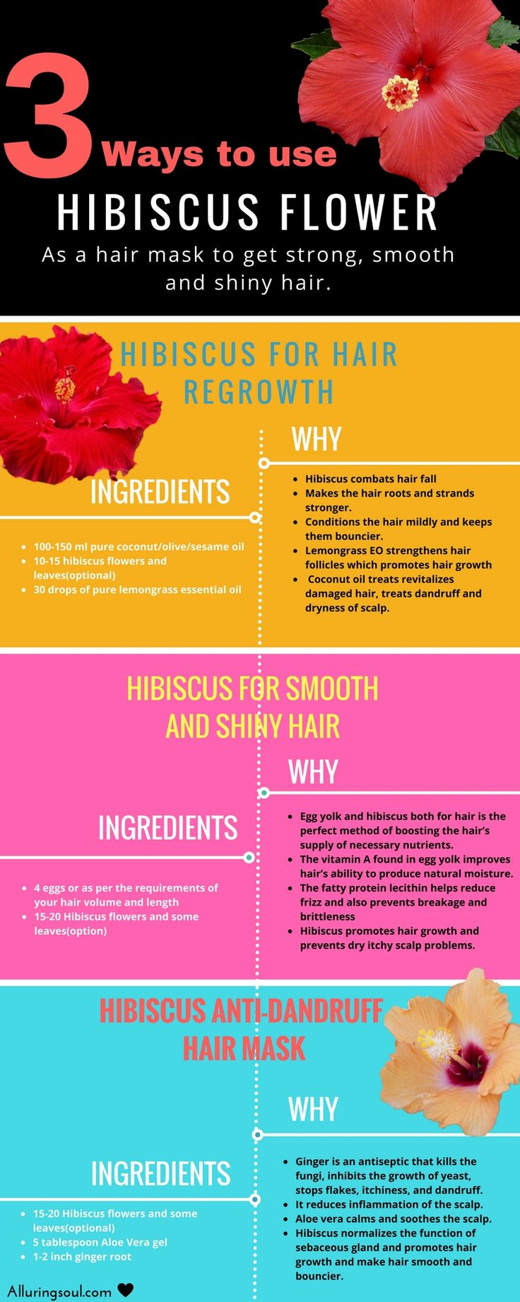 Diy Hair Care Tips Hibiscus For Hair Regrowth Strong And