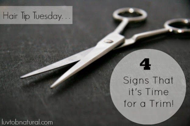 4 Signs That it's Time For a Trim! | Curly Nikki | Natural Hair Styles and Nat...