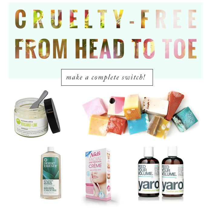 Here's a little guide for all the cruelty-free beginners out there! I've...
