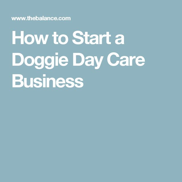 How to Start a Doggie Day Care Business                                         ...