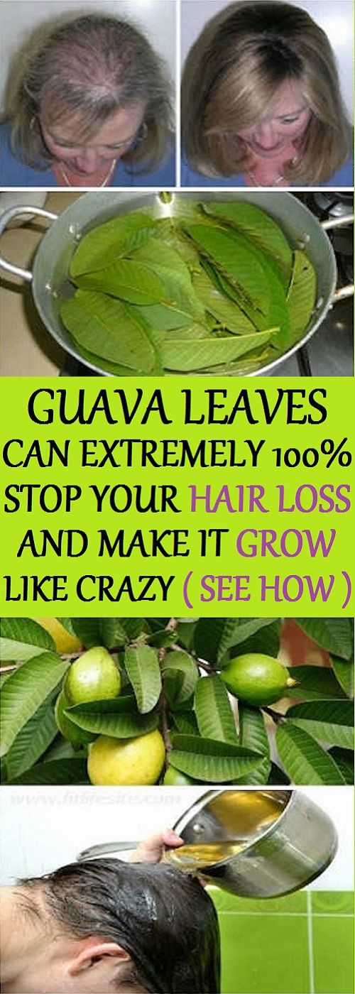 In this article, we are gonna show you the health benefits of guava leaves and h...