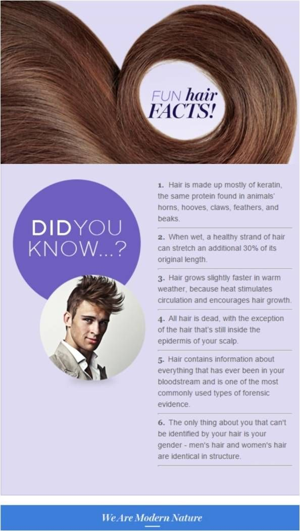 Fun hair facts! Check out amazing products for your hair at www.srahlf.mymona...