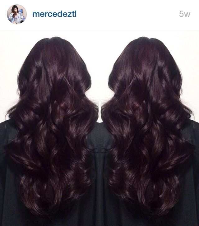 Trendy Hair Color Highlights Dark Burgundy Midnight Ruby Hair
