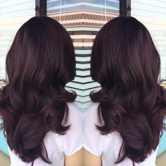 Trendy Ideas For Hair Color Highlights Deep Violet Red Brown