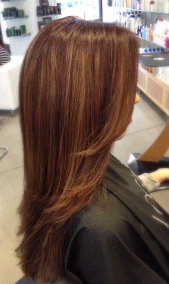 Chestnut Hair Color Caramel Highlights Best Hair Color 2017