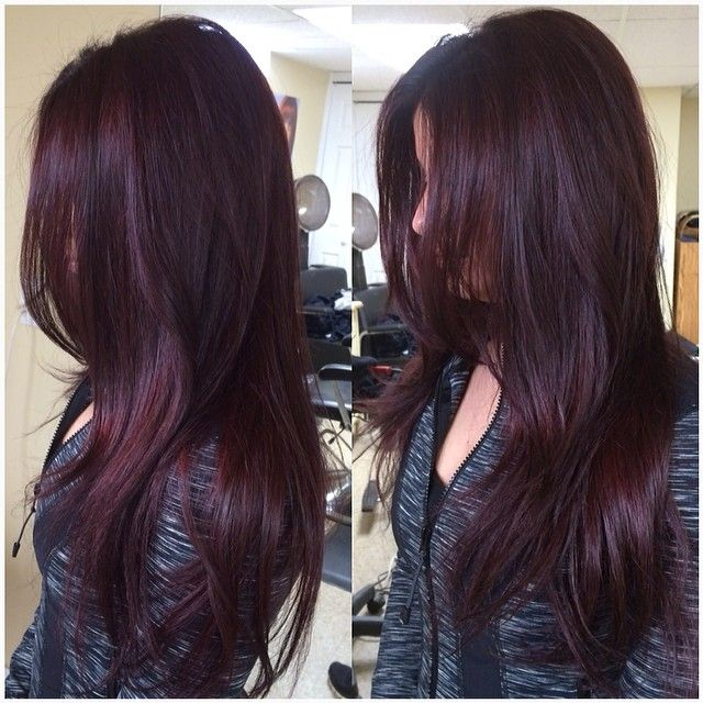 Red Hair Color Red Violet Beauty Haircut Home Of Hairstyle