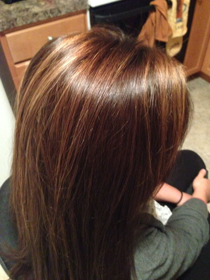 Rich Chocolate Brown Hair Color With Caramel Highlights Best Hair