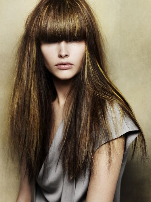 long brown straight cut.  I like the shimmeriness of the highlights and how they...