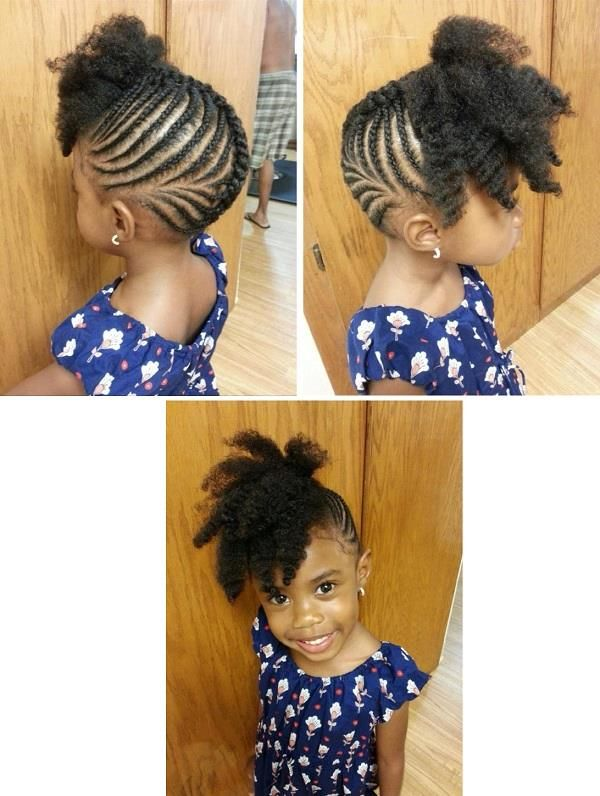 American And African Hair Braiding Pretty Updo Black