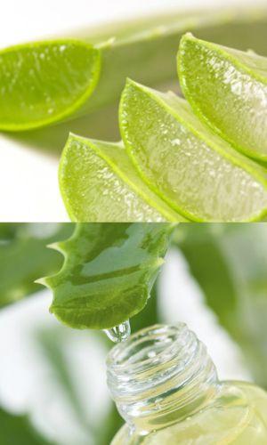 How To Use Aloe Vera Gel For Hair Growth
